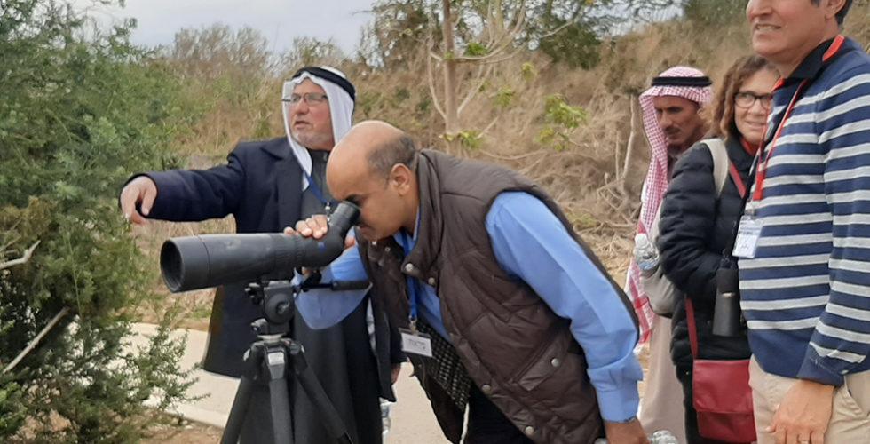 Birds watching, Israel